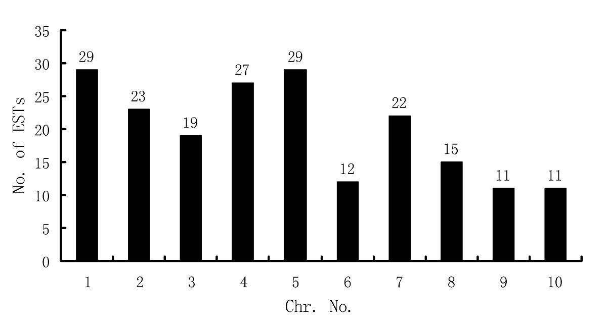 https://static-content.springer.com/image/art%3A10.1186%2F1471-2229-10-189/MediaObjects/12870_2009_Article_683_Fig6_HTML.jpg