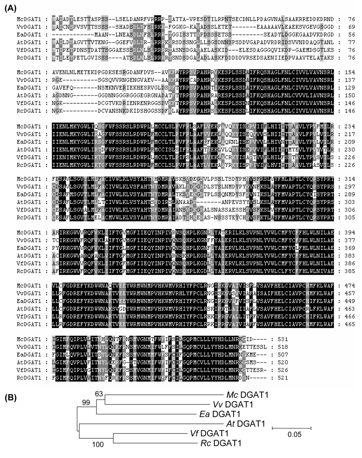 https://static-content.springer.com/image/art%3A10.1186%2F1471-2229-10-250/MediaObjects/12870_2010_Article_744_Fig7_HTML.jpg