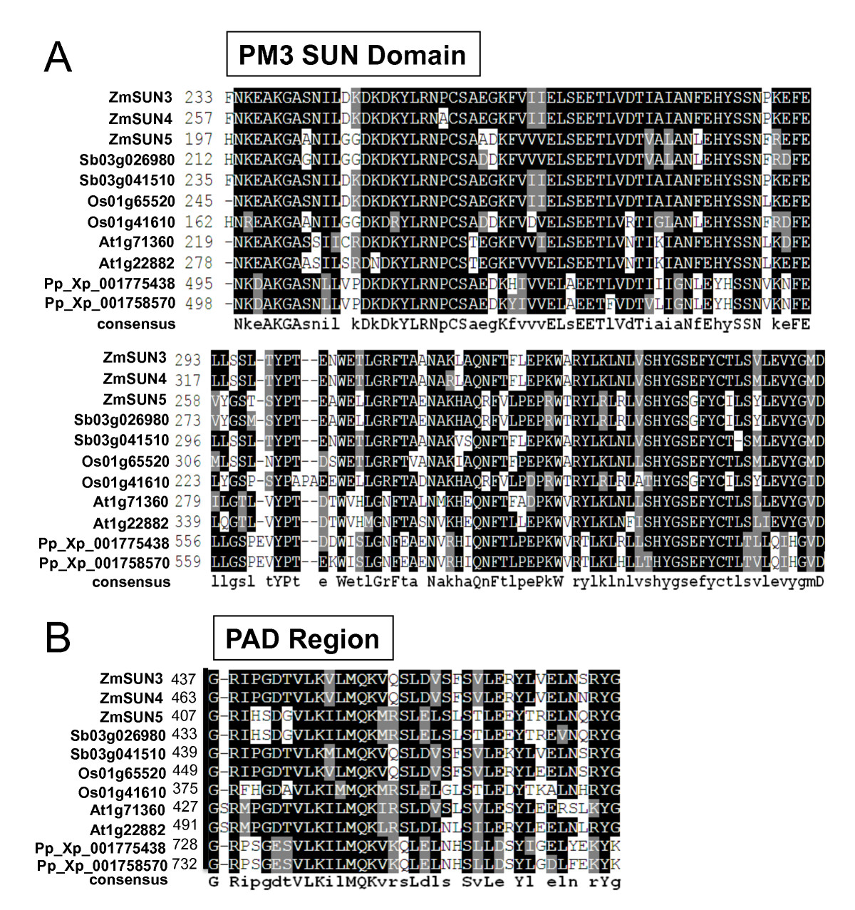 https://static-content.springer.com/image/art%3A10.1186%2F1471-2229-10-269/MediaObjects/12870_2010_Article_763_Fig4_HTML.jpg