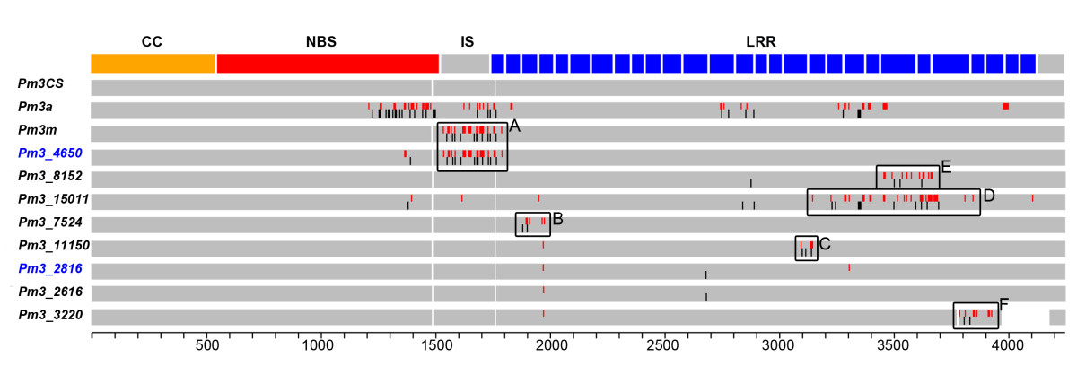 https://static-content.springer.com/image/art%3A10.1186%2F1471-2229-10-88/MediaObjects/12870_2010_Article_582_Fig1_HTML.jpg