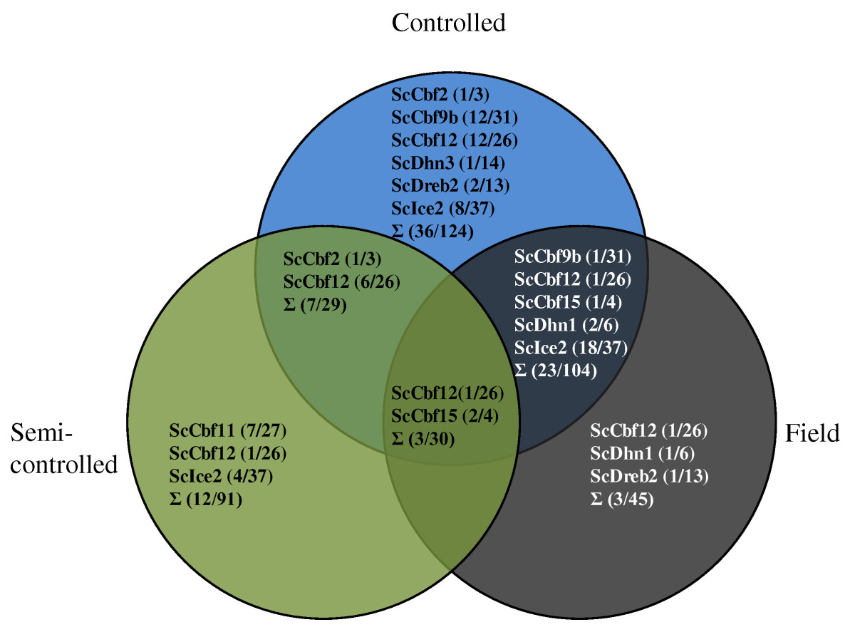 https://static-content.springer.com/image/art%3A10.1186%2F1471-2229-11-146/MediaObjects/12870_2011_Article_938_Fig3_HTML.jpg