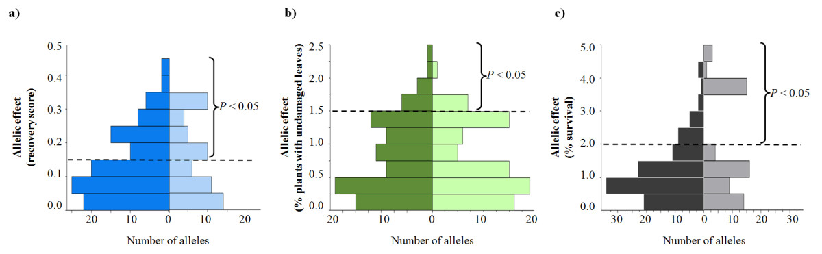 https://static-content.springer.com/image/art%3A10.1186%2F1471-2229-11-146/MediaObjects/12870_2011_Article_938_Fig4_HTML.jpg