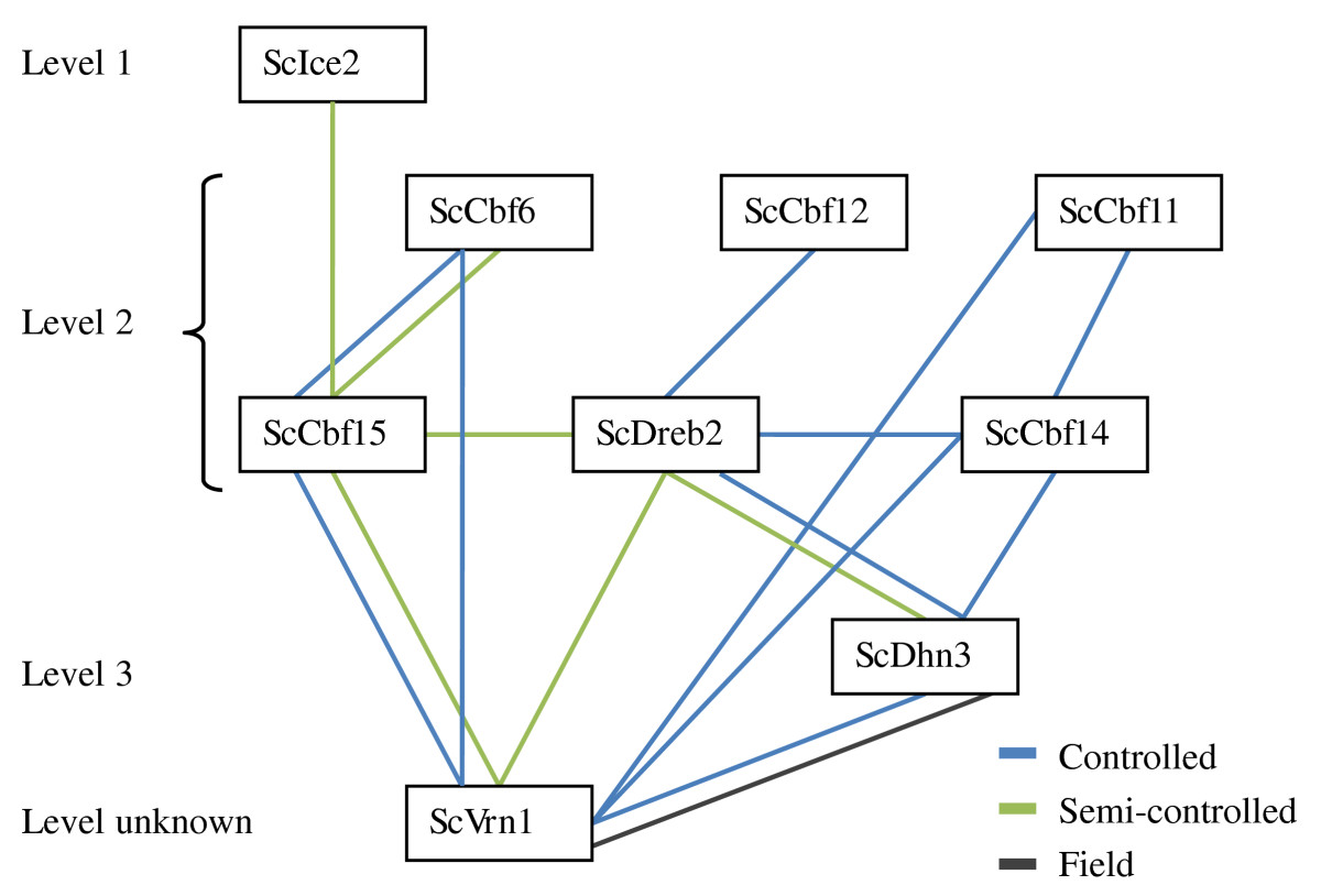 https://static-content.springer.com/image/art%3A10.1186%2F1471-2229-11-146/MediaObjects/12870_2011_Article_938_Fig6_HTML.jpg