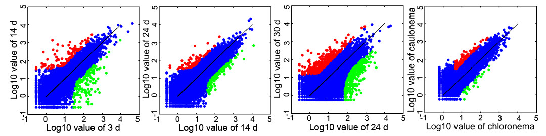 https://static-content.springer.com/image/art%3A10.1186%2F1471-2229-11-177/MediaObjects/12870_2011_Article_961_Fig2_HTML.jpg