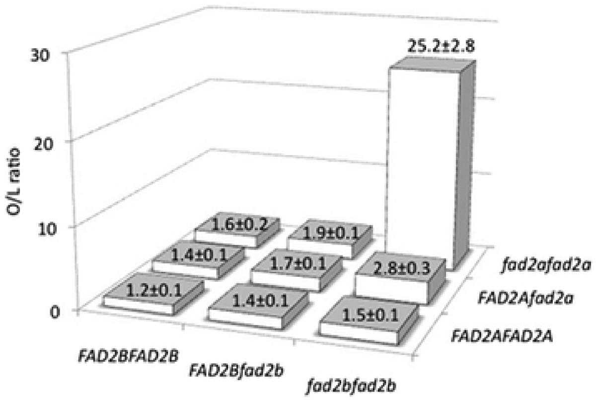 https://static-content.springer.com/image/art%3A10.1186%2F1471-2229-12-80/MediaObjects/12870_2012_Article_1024_Fig2_HTML.jpg