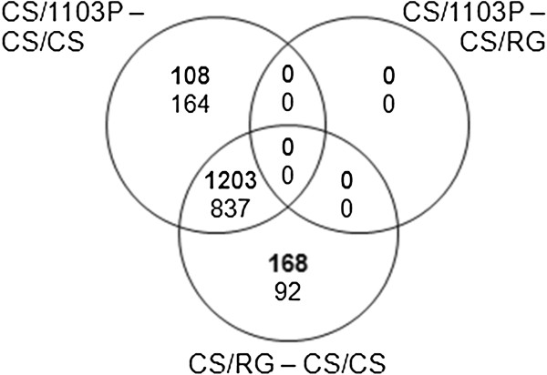 https://static-content.springer.com/image/art%3A10.1186%2F1471-2229-13-147/MediaObjects/12870_2013_Article_1366_Fig4_HTML.jpg
