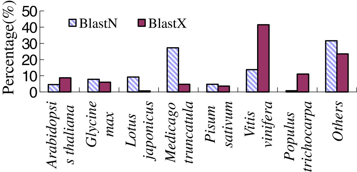 https://static-content.springer.com/image/art%3A10.1186%2F1471-2229-13-88/MediaObjects/12870_2012_Article_1300_Fig4_HTML.jpg