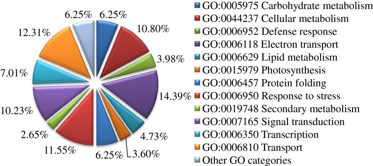 https://static-content.springer.com/image/art%3A10.1186%2F1471-2229-13-88/MediaObjects/12870_2012_Article_1300_Fig5_HTML.jpg