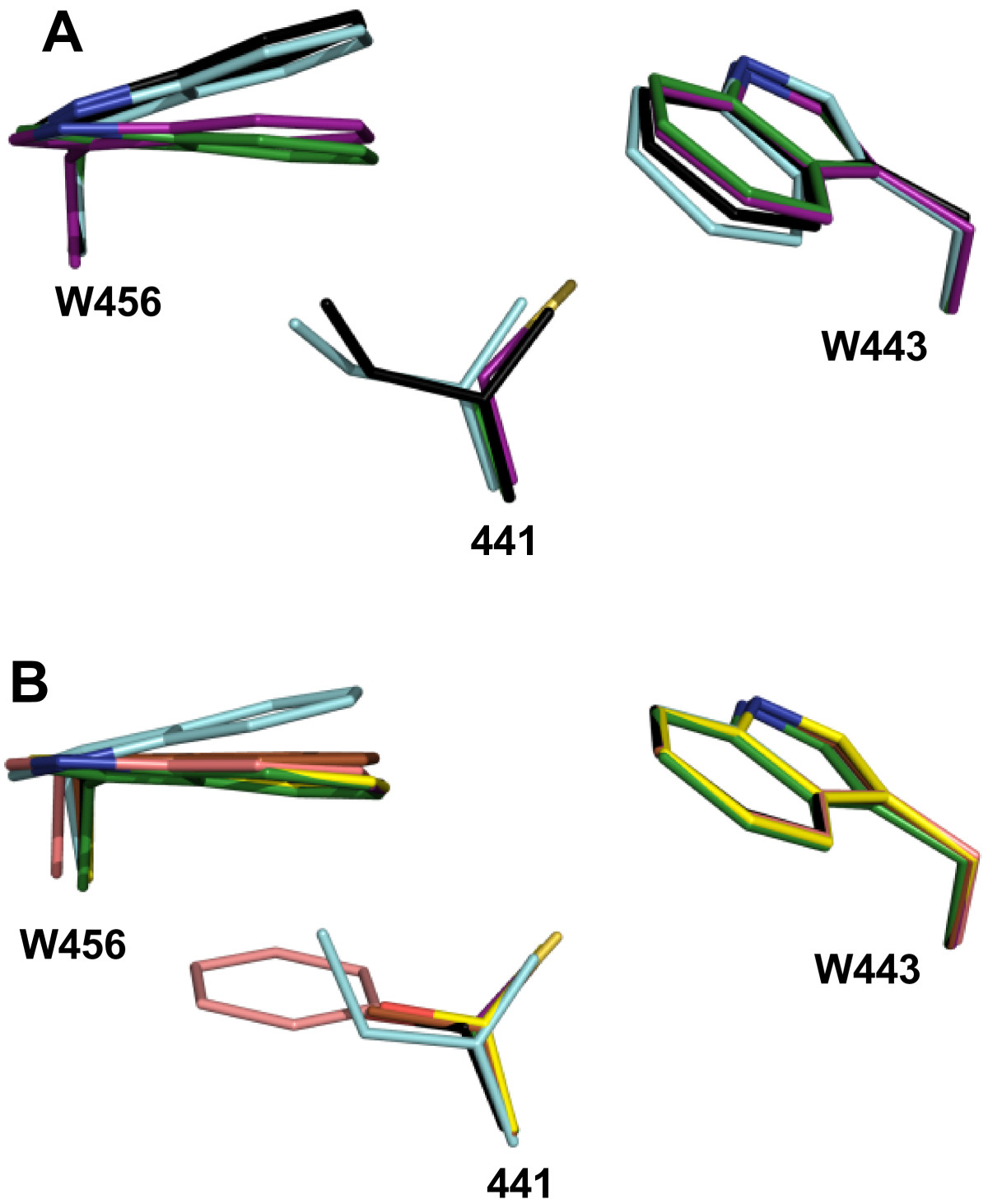 https://static-content.springer.com/image/art%3A10.1186%2F1471-2229-14-149/MediaObjects/12870_2014_Article_1546_Fig5_HTML.jpg