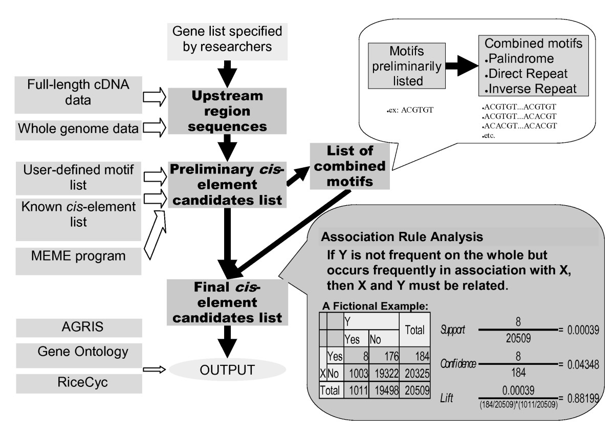 https://static-content.springer.com/image/art%3A10.1186%2F1471-2229-8-20/MediaObjects/12870_2007_Article_228_Fig1_HTML.jpg
