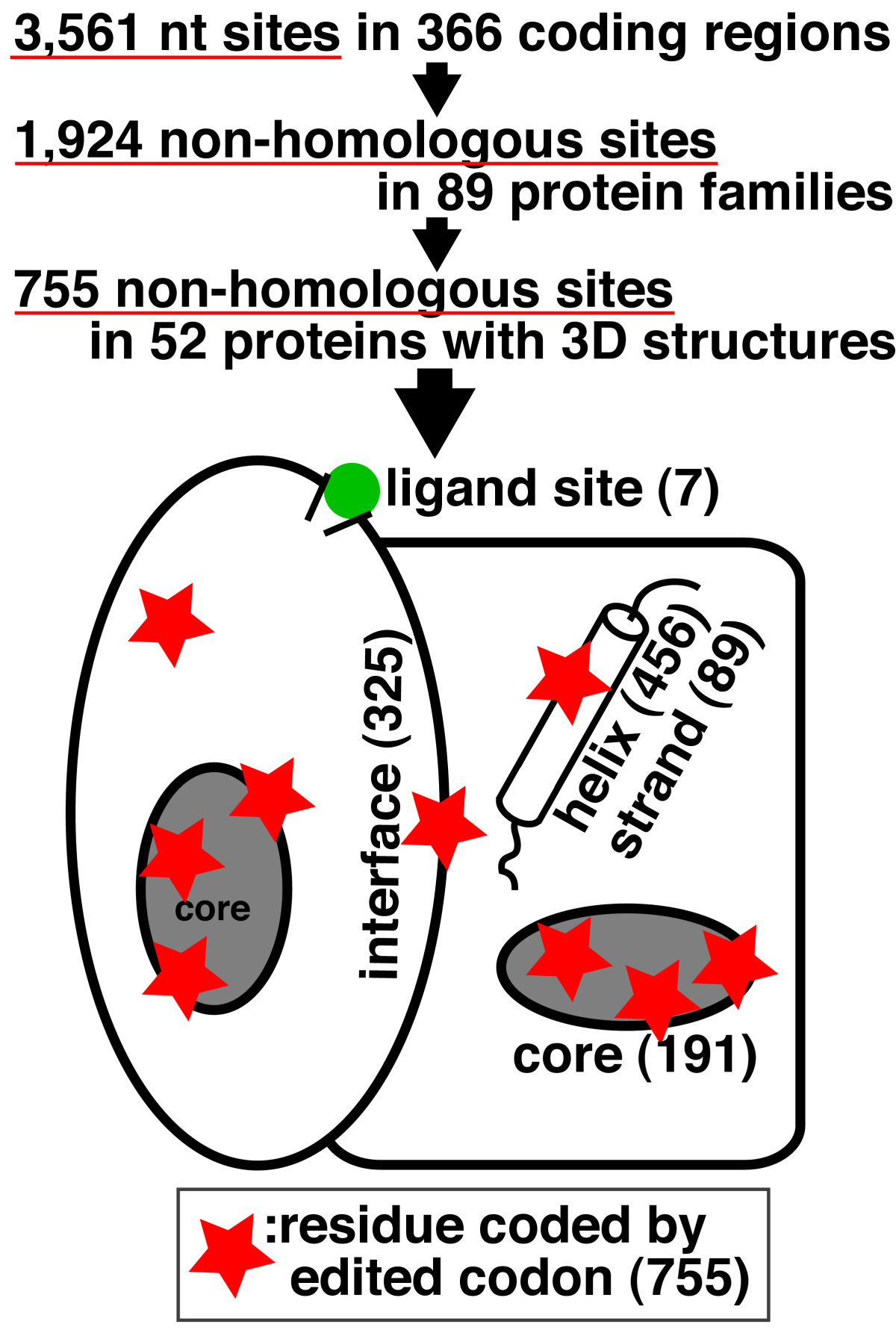 https://static-content.springer.com/image/art%3A10.1186%2F1471-2229-8-79/MediaObjects/12870_2008_Article_287_Fig2_HTML.jpg