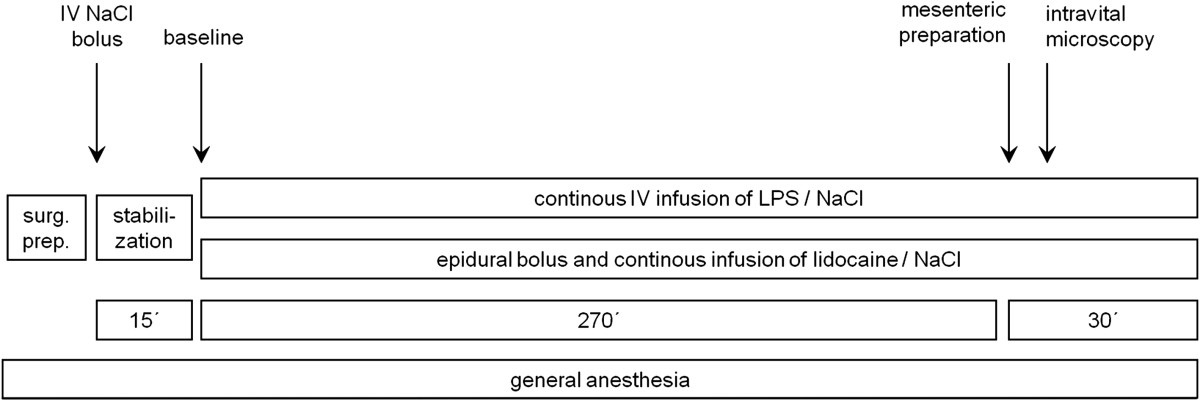 https://static-content.springer.com/image/art%3A10.1186%2F1471-2253-14-23/MediaObjects/12871_2013_Article_219_Fig1_HTML.jpg
