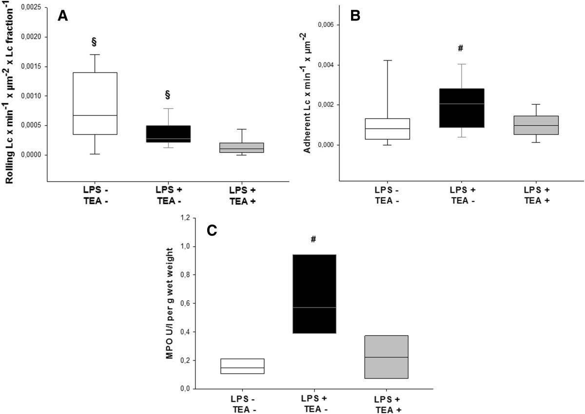 https://static-content.springer.com/image/art%3A10.1186%2F1471-2253-14-23/MediaObjects/12871_2013_Article_219_Fig5_HTML.jpg