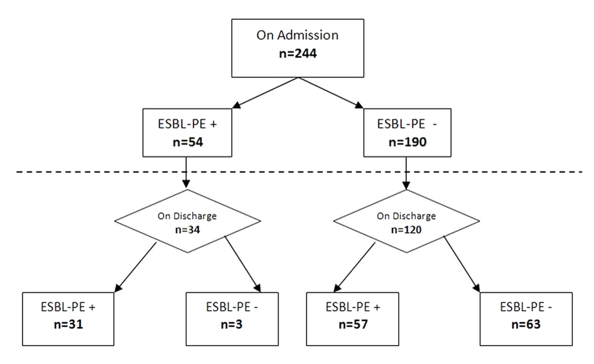 https://static-content.springer.com/image/art%3A10.1186%2F1471-2334-10-204/MediaObjects/12879_2009_Article_1184_Fig1_HTML.jpg