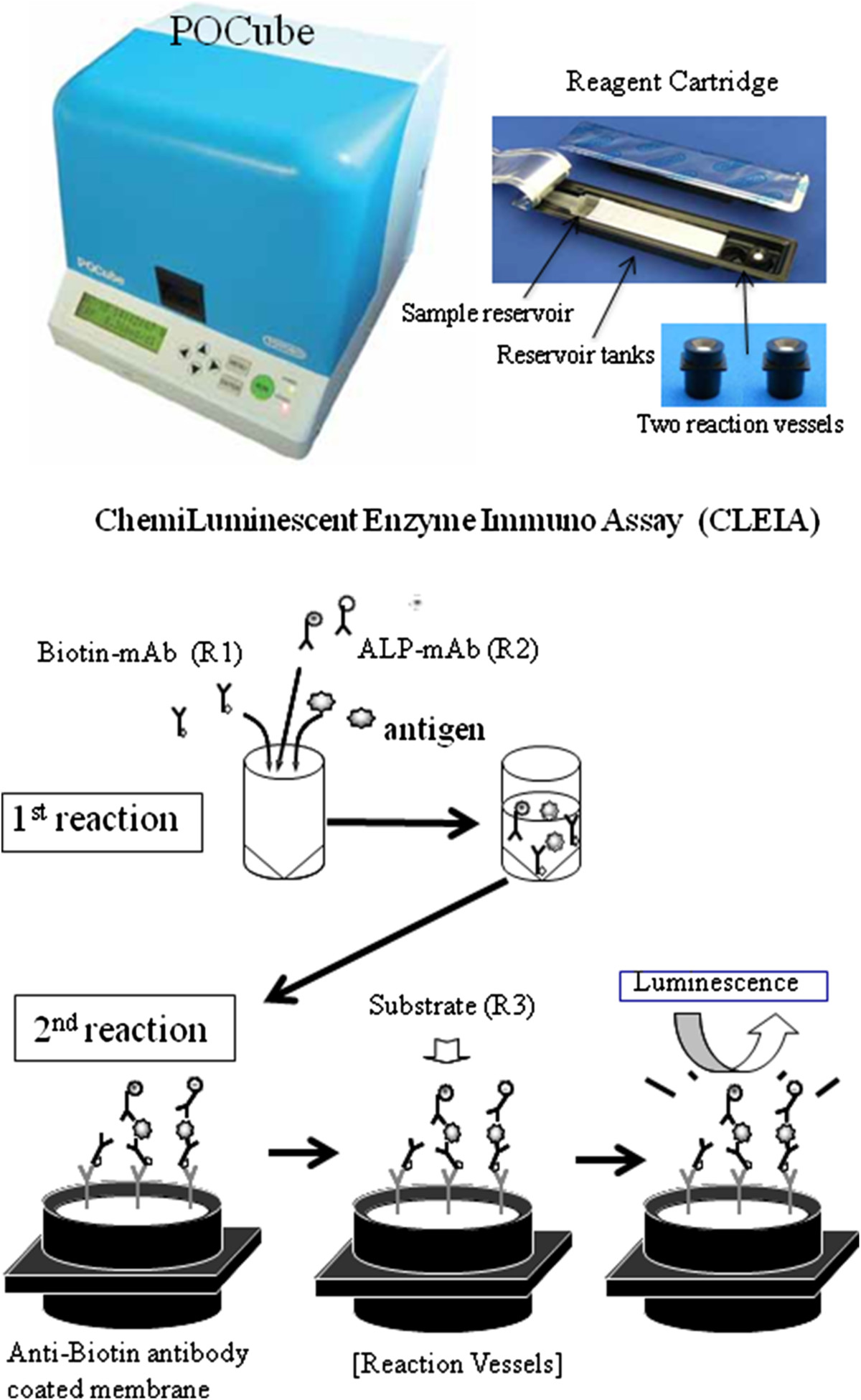 https://static-content.springer.com/image/art%3A10.1186%2F1471-2334-14-362/MediaObjects/12879_2014_Article_3688_Fig1_HTML.jpg