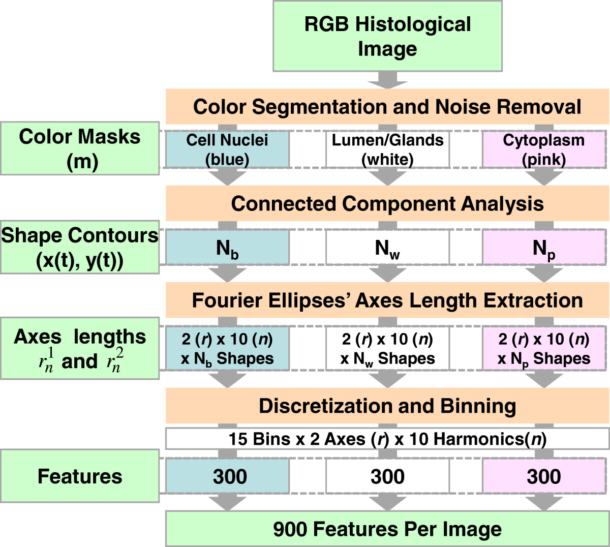 https://static-content.springer.com/image/art%3A10.1186%2F1471-2342-13-9/MediaObjects/12880_2012_Article_173_Fig7_HTML.jpg
