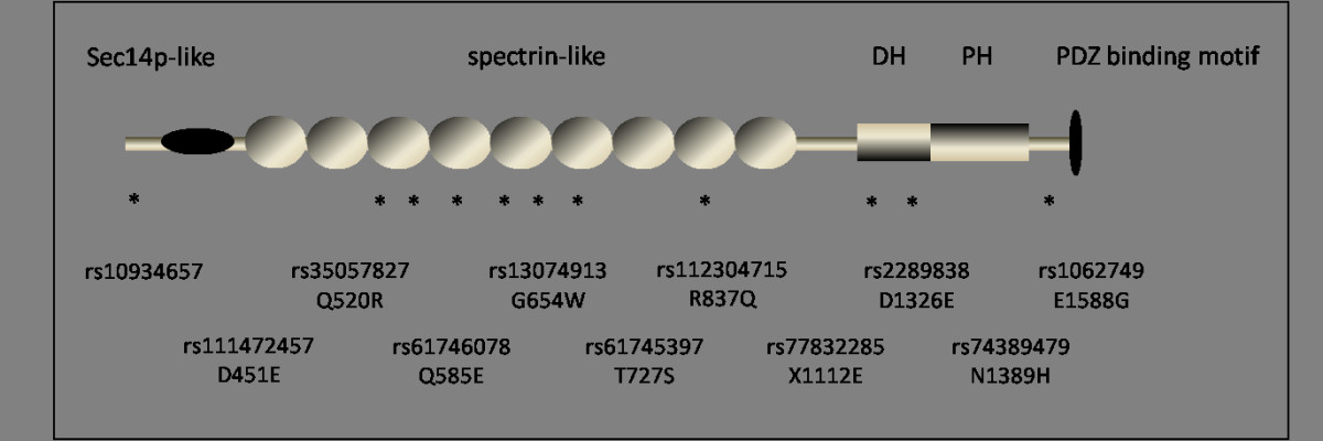 https://static-content.springer.com/image/art%3A10.1186%2F1471-2350-13-48/MediaObjects/12881_2011_Article_947_Fig1_HTML.jpg