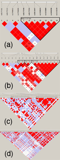 https://static-content.springer.com/image/art%3A10.1186%2F1471-2350-9-18/MediaObjects/12881_2007_Article_312_Fig4_HTML.jpg