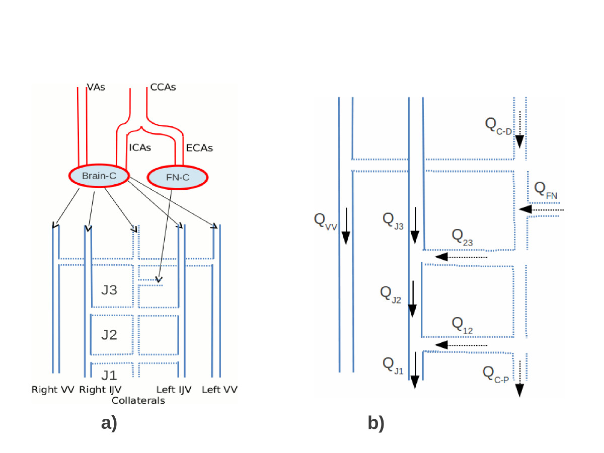 https://static-content.springer.com/image/art%3A10.1186%2F1471-2377-13-81/MediaObjects/12883_2013_Article_810_Fig1_HTML.jpg