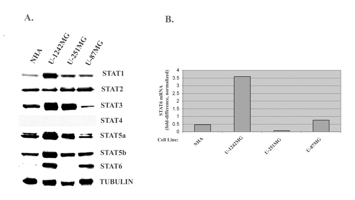 https://static-content.springer.com/image/art%3A10.1186%2F1471-2407-11-184/MediaObjects/12885_2010_Article_2682_Fig1_HTML.jpg