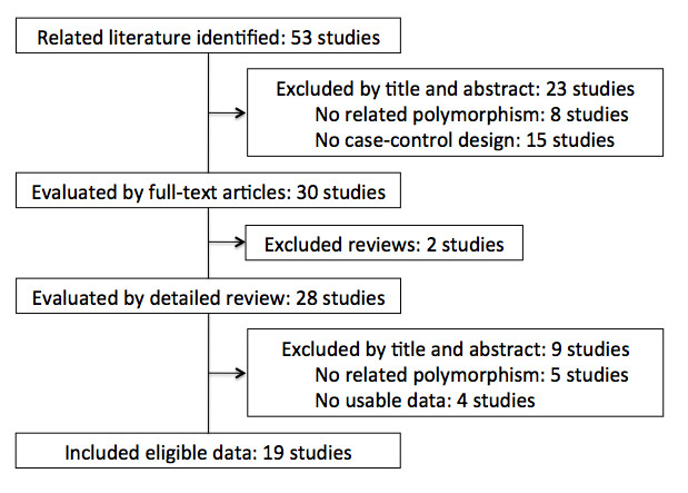 https://static-content.springer.com/image/art%3A10.1186%2F1471-2407-12-528/MediaObjects/12885_2012_Article_3525_Fig1_HTML.jpg