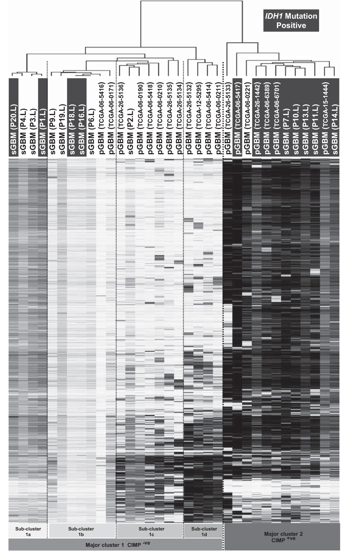 https://static-content.springer.com/image/art%3A10.1186%2F1471-2407-14-506/MediaObjects/12885_2013_Article_4692_Fig3_HTML.jpg