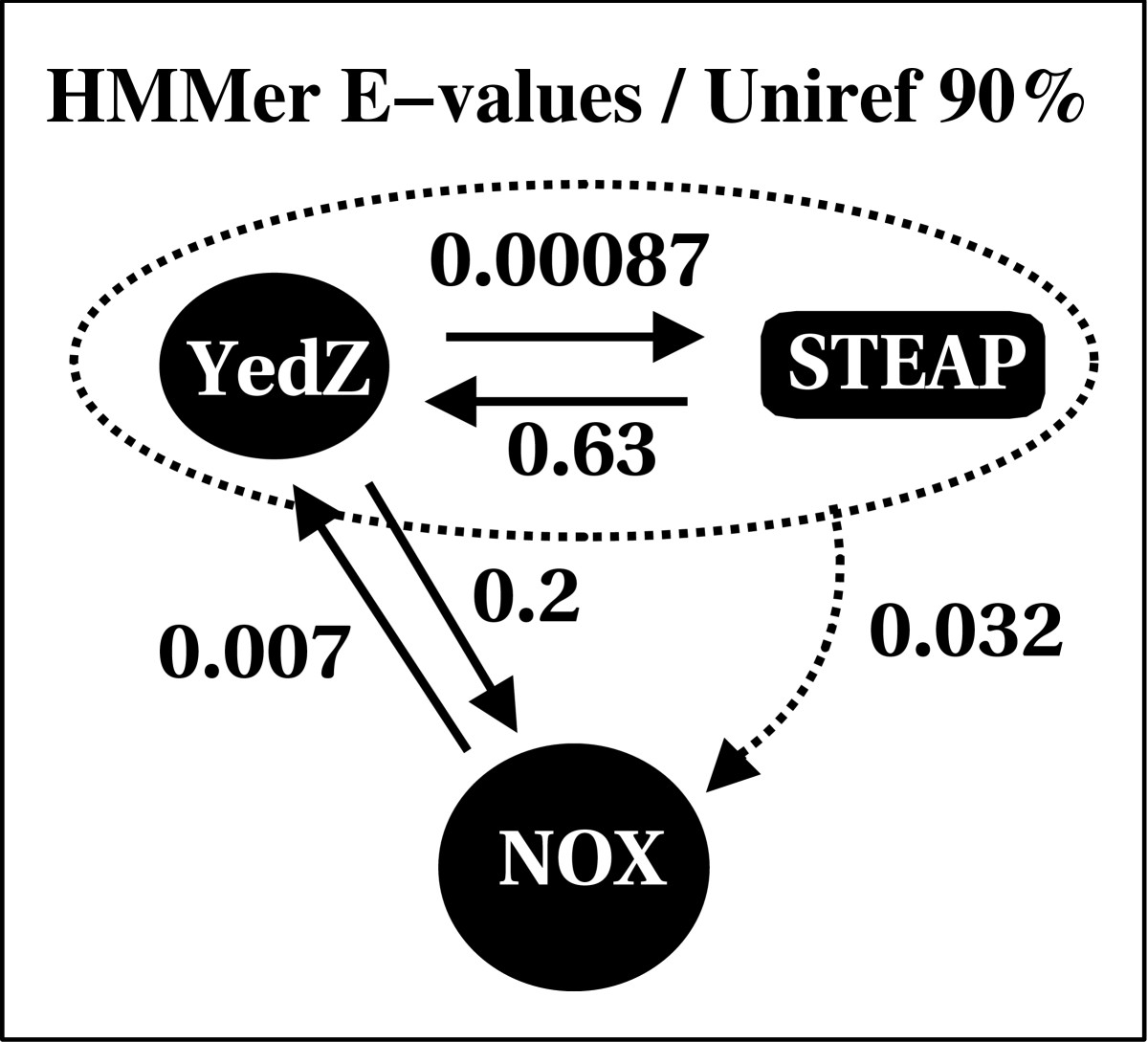 https://static-content.springer.com/image/art%3A10.1186%2F1471-2407-4-98/MediaObjects/12885_2004_Article_188_Fig3_HTML.jpg
