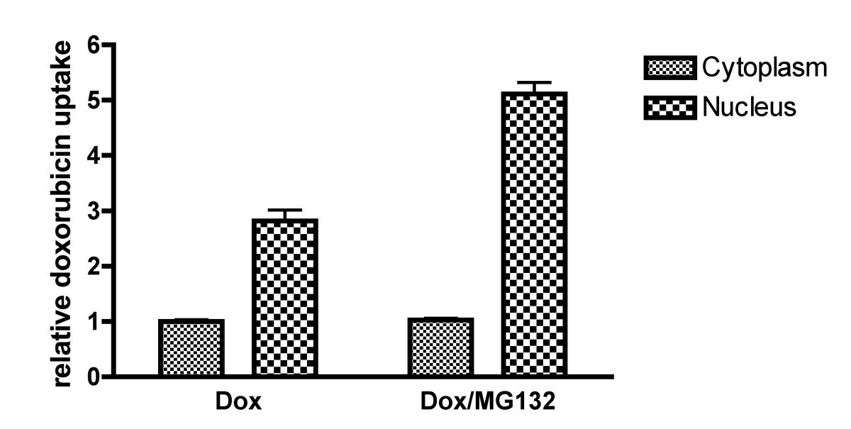 https://static-content.springer.com/image/art%3A10.1186%2F1471-2407-5-114/MediaObjects/12885_2005_Article_302_Fig4_HTML.jpg