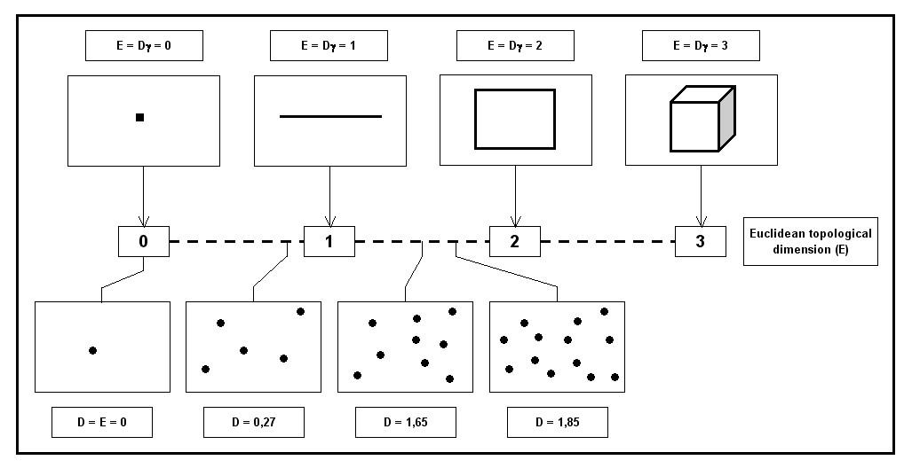 https://static-content.springer.com/image/art%3A10.1186%2F1471-2407-5-14/MediaObjects/12885_2004_Article_202_Fig3_HTML.jpg