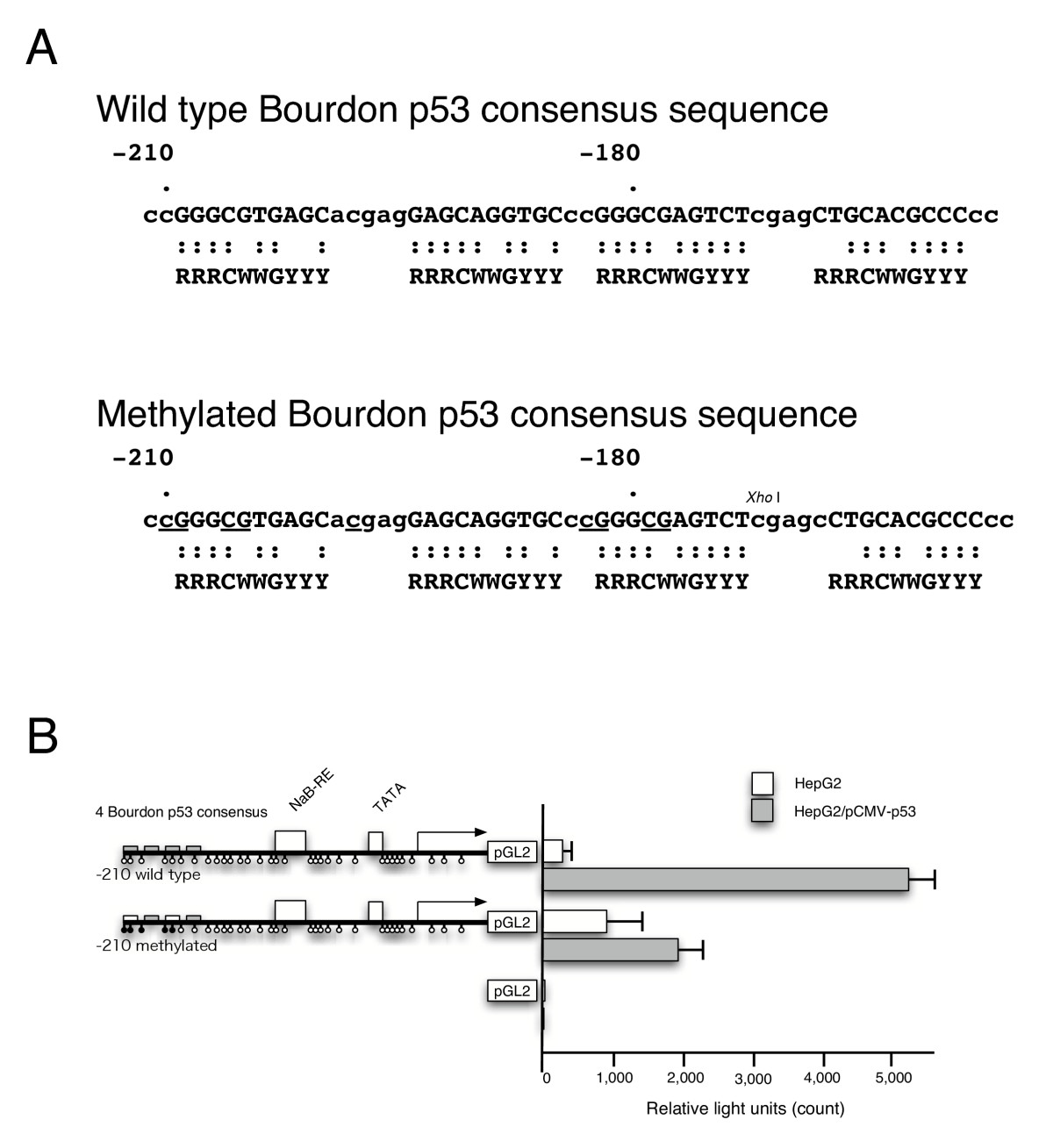 https://static-content.springer.com/image/art%3A10.1186%2F1471-2407-5-9/MediaObjects/12885_2004_Article_197_Fig4_HTML.jpg
