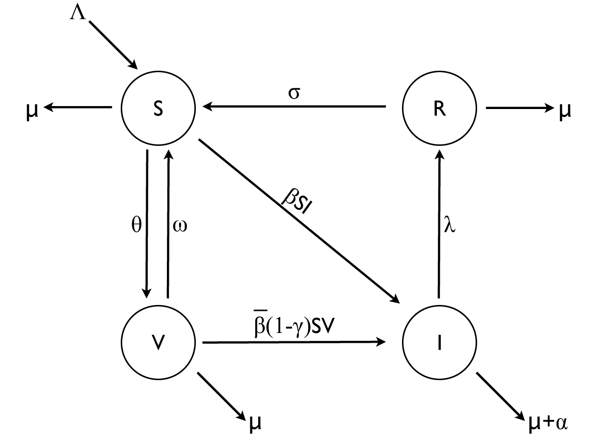 https://static-content.springer.com/image/art%3A10.1186%2F1471-2458-11-S1-S5/MediaObjects/12889_2011_Article_2827_Fig1_HTML.jpg