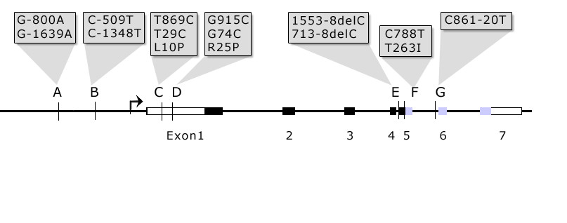 https://static-content.springer.com/image/art%3A10.1186%2F1471-2474-6-29/MediaObjects/12891_2005_Article_142_Fig1_HTML.jpg