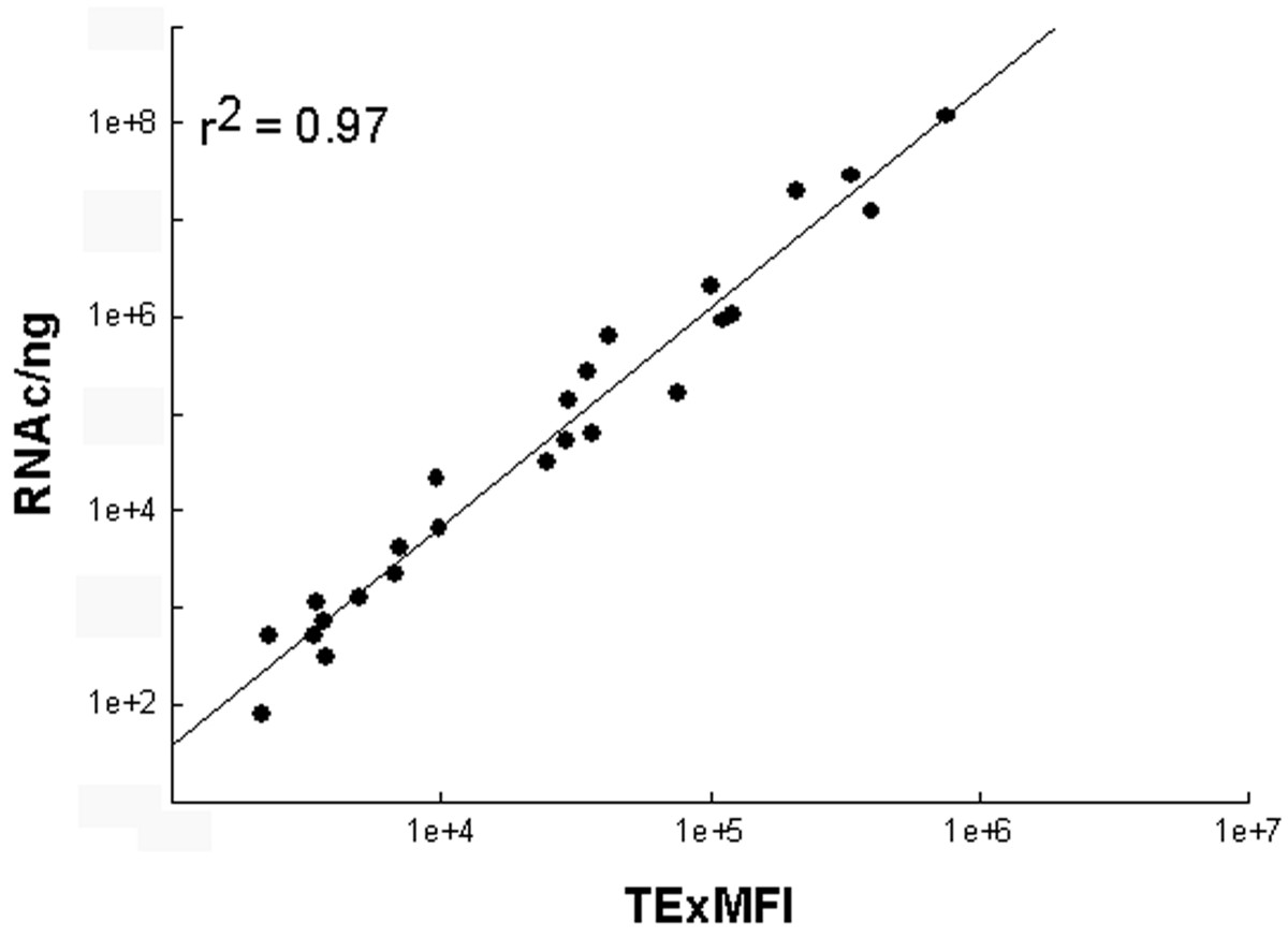 https://static-content.springer.com/image/art%3A10.1186%2F1472-6750-6-34/MediaObjects/12896_2006_Article_157_Fig4_HTML.jpg