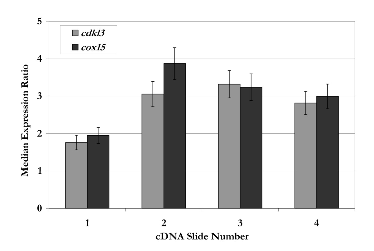 https://static-content.springer.com/image/art%3A10.1186%2F1472-6750-7-71/MediaObjects/12896_2007_Article_246_Fig2_HTML.jpg