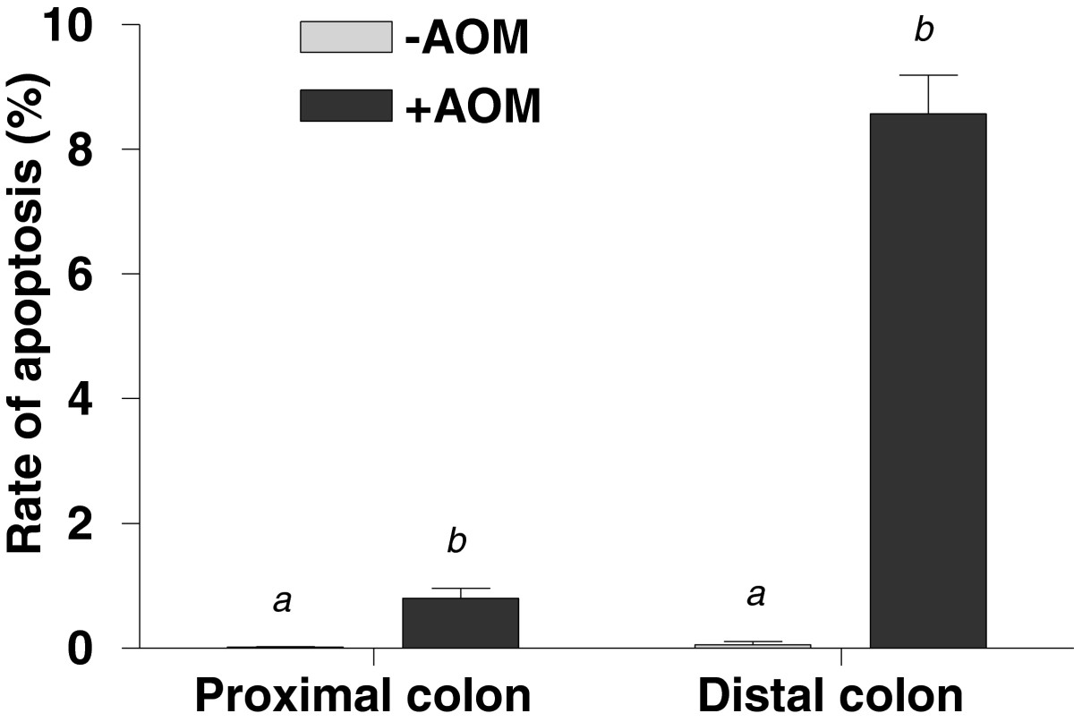 https://static-content.springer.com/image/art%3A10.1186%2F1472-6793-13-2/MediaObjects/12899_2012_Article_202_Fig6_HTML.jpg