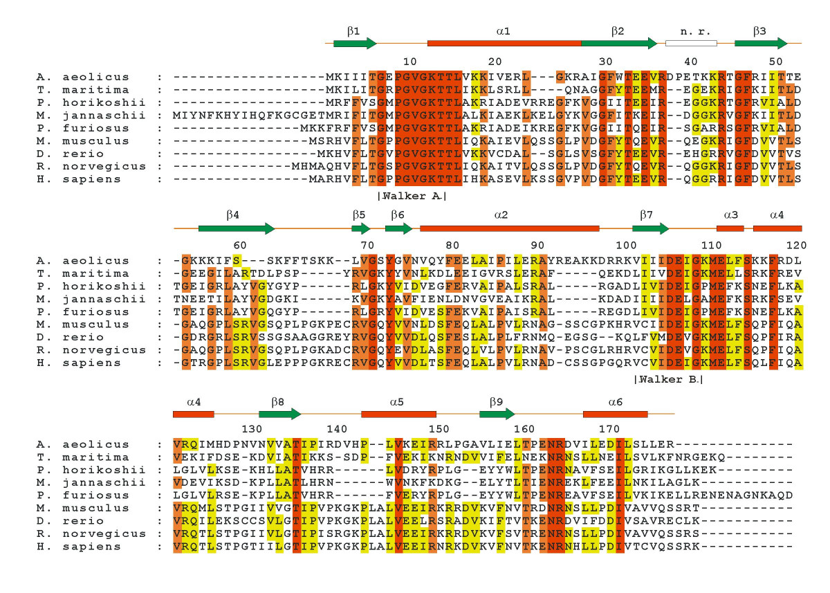 https://static-content.springer.com/image/art%3A10.1186%2F1472-6807-5-7/MediaObjects/12900_2004_Article_40_Fig1_HTML.jpg