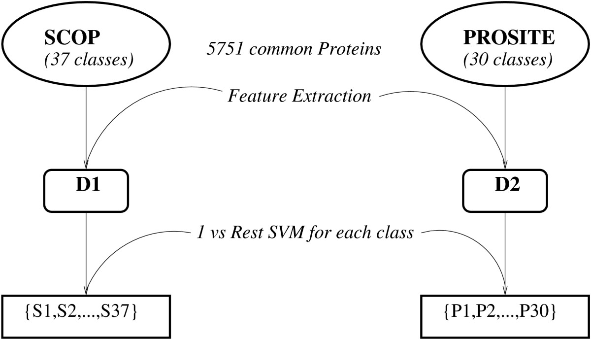 https://static-content.springer.com/image/art%3A10.1186%2F1472-6807-8-40/MediaObjects/12900_2008_Article_205_Fig1_HTML.jpg