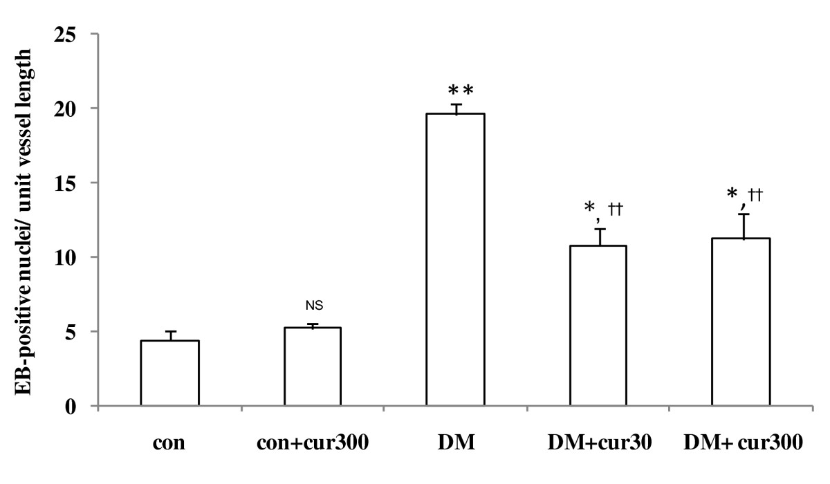 https://static-content.springer.com/image/art%3A10.1186%2F1472-6882-10-57/MediaObjects/12906_2009_Article_334_Fig4_HTML.jpg
