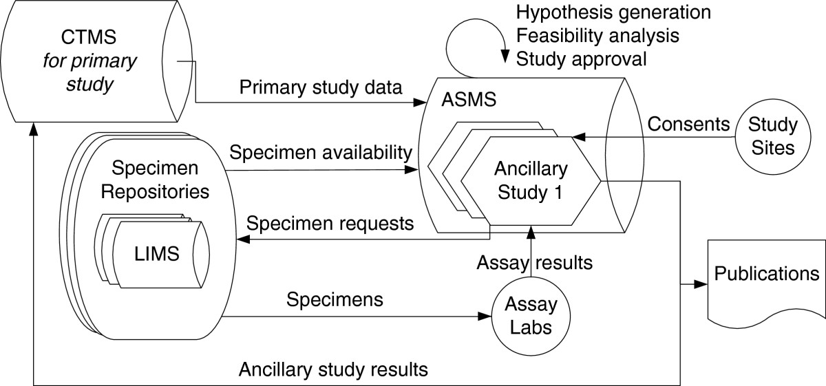 https://static-content.springer.com/image/art%3A10.1186%2F1472-6947-13-5/MediaObjects/12911_2012_Article_617_Fig1_HTML.jpg