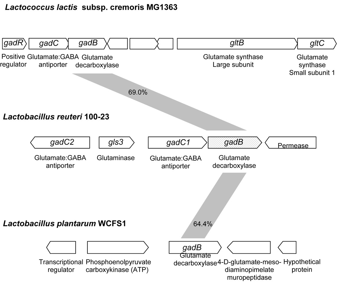 https://static-content.springer.com/image/art%3A10.1186%2F1475-2859-10-S1-S8/MediaObjects/12934_2011_Article_563_Fig1_HTML.jpg