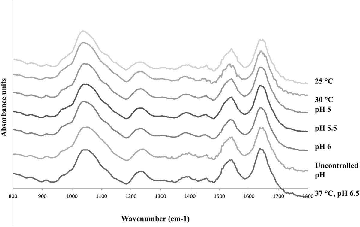 https://static-content.springer.com/image/art%3A10.1186%2F1475-2859-11-116/MediaObjects/12934_2011_Article_706_Fig2_HTML.jpg