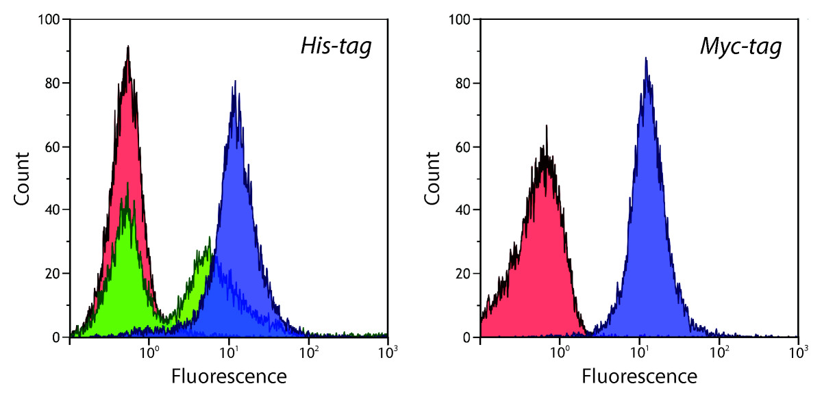 https://static-content.springer.com/image/art%3A10.1186%2F1475-2859-11-118/MediaObjects/12934_2012_Article_738_Fig2_HTML.jpg