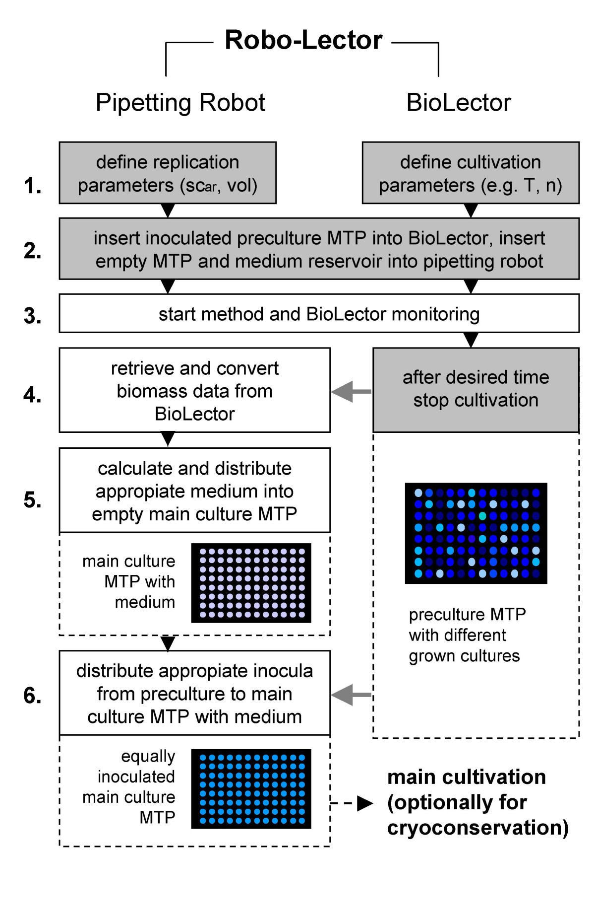 https://static-content.springer.com/image/art%3A10.1186%2F1475-2859-8-42/MediaObjects/12934_2009_Article_362_Fig4_HTML.jpg