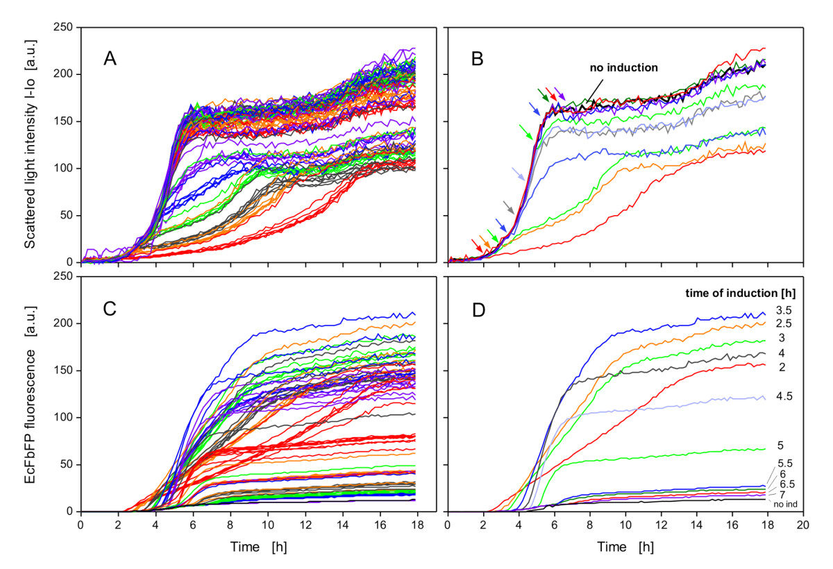https://static-content.springer.com/image/art%3A10.1186%2F1475-2859-8-42/MediaObjects/12934_2009_Article_362_Fig5_HTML.jpg