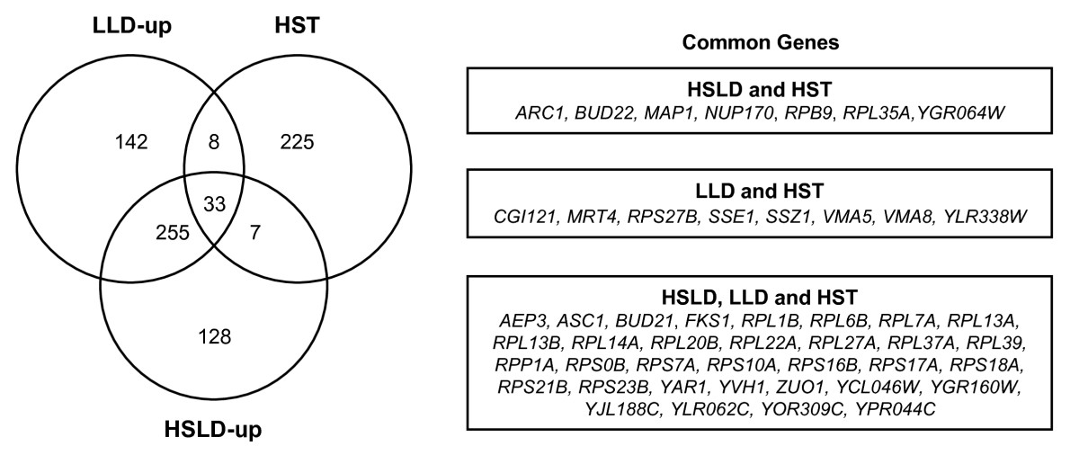 https://static-content.springer.com/image/art%3A10.1186%2F1475-2859-9-56/MediaObjects/12934_2010_Article_446_Fig2_HTML.jpg