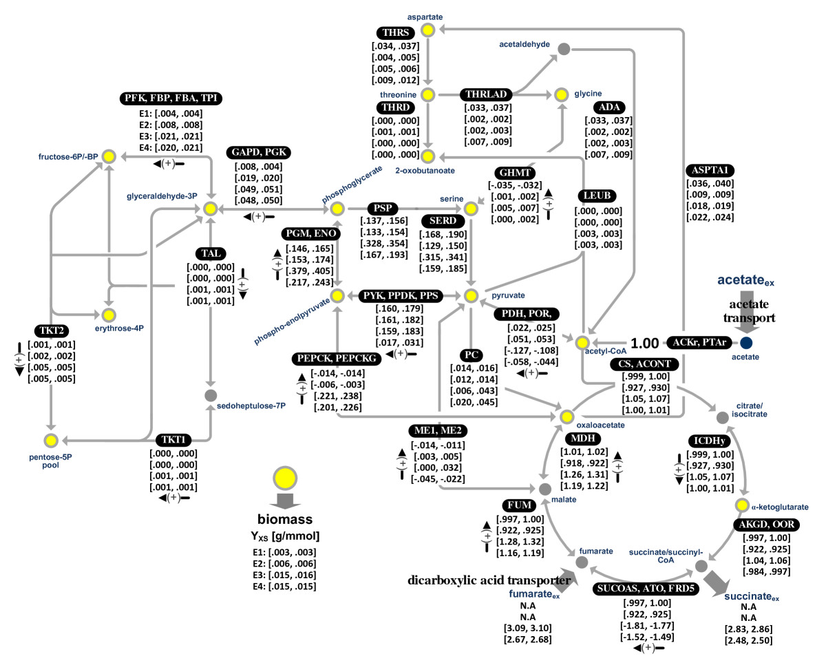 https://static-content.springer.com/image/art%3A10.1186%2F1475-2859-9-90/MediaObjects/12934_2010_Article_480_Fig2_HTML.jpg