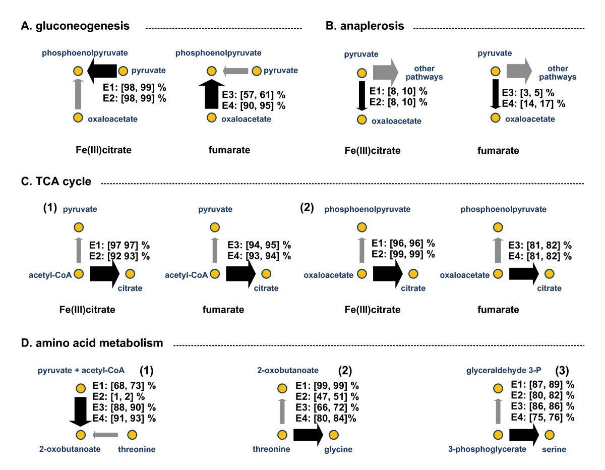 https://static-content.springer.com/image/art%3A10.1186%2F1475-2859-9-90/MediaObjects/12934_2010_Article_480_Fig3_HTML.jpg