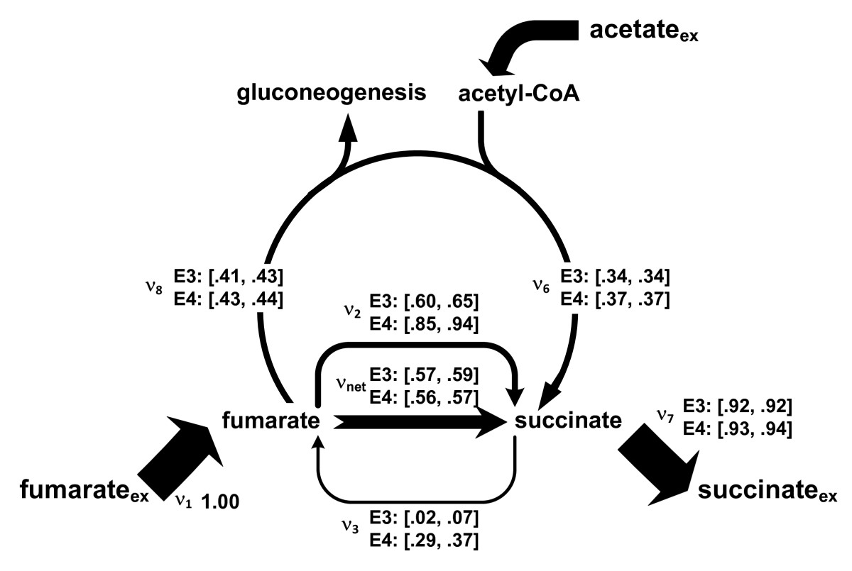 https://static-content.springer.com/image/art%3A10.1186%2F1475-2859-9-90/MediaObjects/12934_2010_Article_480_Fig4_HTML.jpg