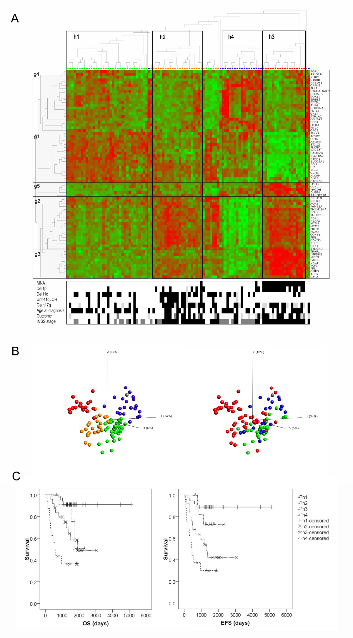 https://static-content.springer.com/image/art%3A10.1186%2F1475-2867-11-9/MediaObjects/12935_2010_Article_288_Fig3_HTML.jpg