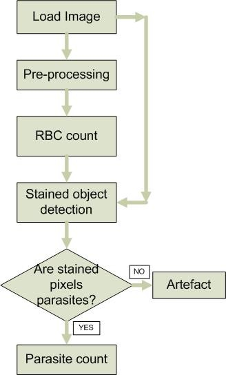 https://static-content.springer.com/image/art%3A10.1186%2F1475-2875-10-364/MediaObjects/12936_2011_Article_1937_Fig1_HTML.jpg